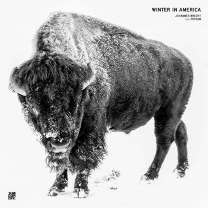Johannes Brecht - Winter in America
